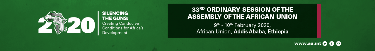 33rd African Union Summit