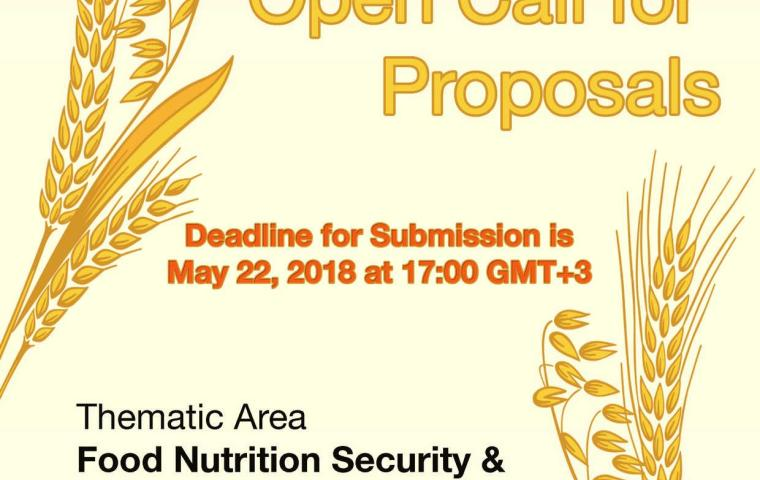 African Union Research Grants II Open Call for Proposals