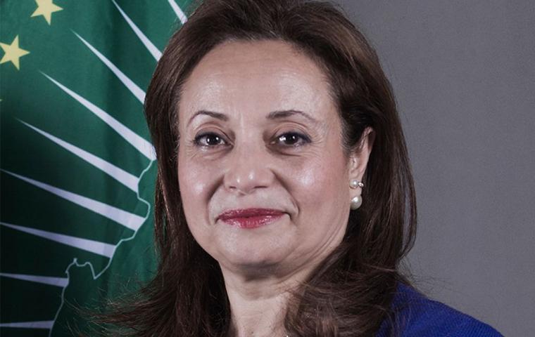 H.E. Amani Abou-Zeid