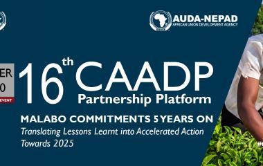16th CAADP Partnership Platform