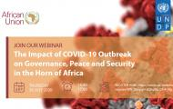 The Impact of COVID-19 Outbreak on Governance, Peace and  Security in the Horn of Africa.