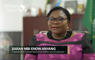 Commissioner for Human Resources Science and Technology, H.E. Prof. Sarah Anyang Agbor